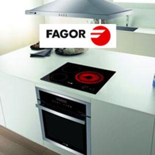 Фото для Испанский производитель бытовой техники Fagor